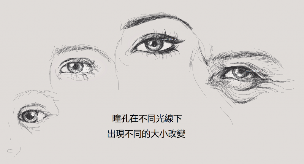 瞳孔反應測試